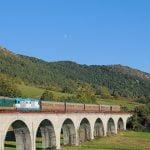 Il Ponte di Carovilli. Foto di Andrea Terrevoli