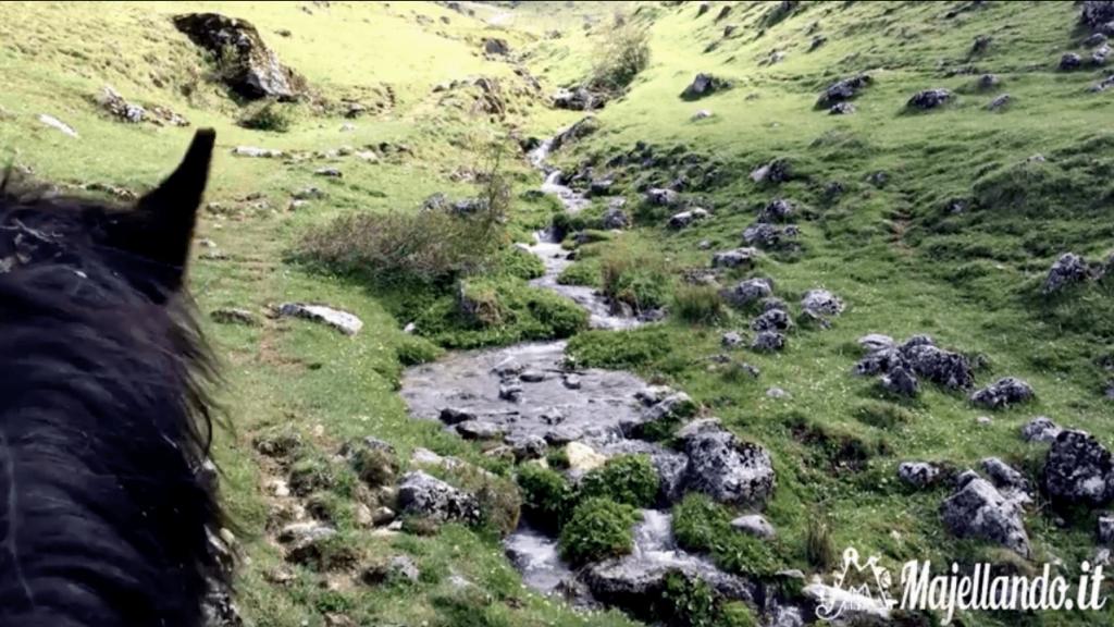 Escursione a cavallo Monte Godi - Scanno